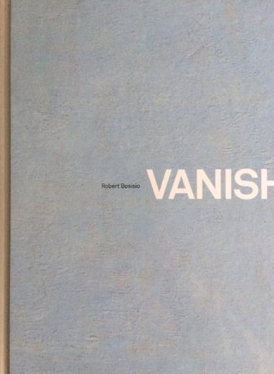 Vanishing_Point_cover