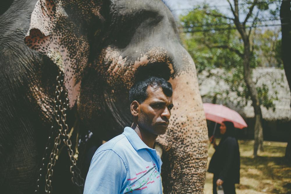 Sri_Lanka-99.jpg