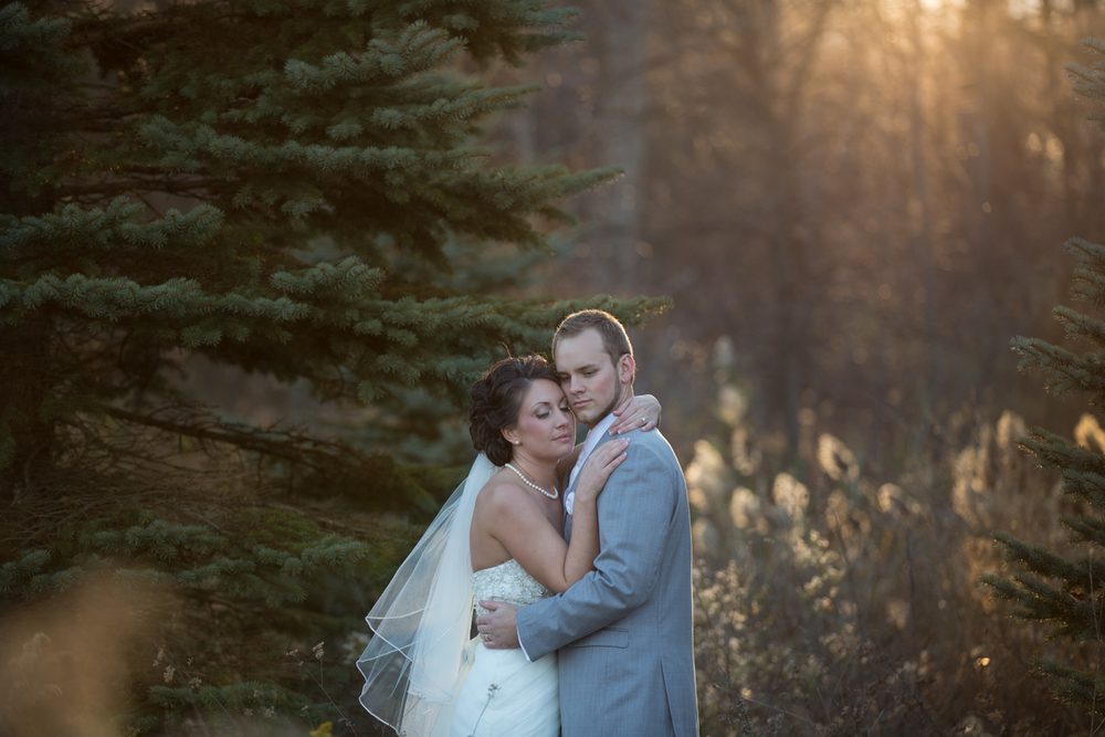 sunny winter michigan wedding in field photography