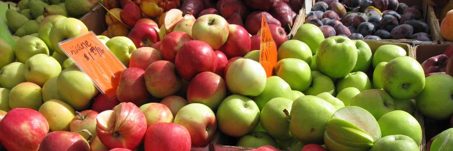 apples-big.jpg