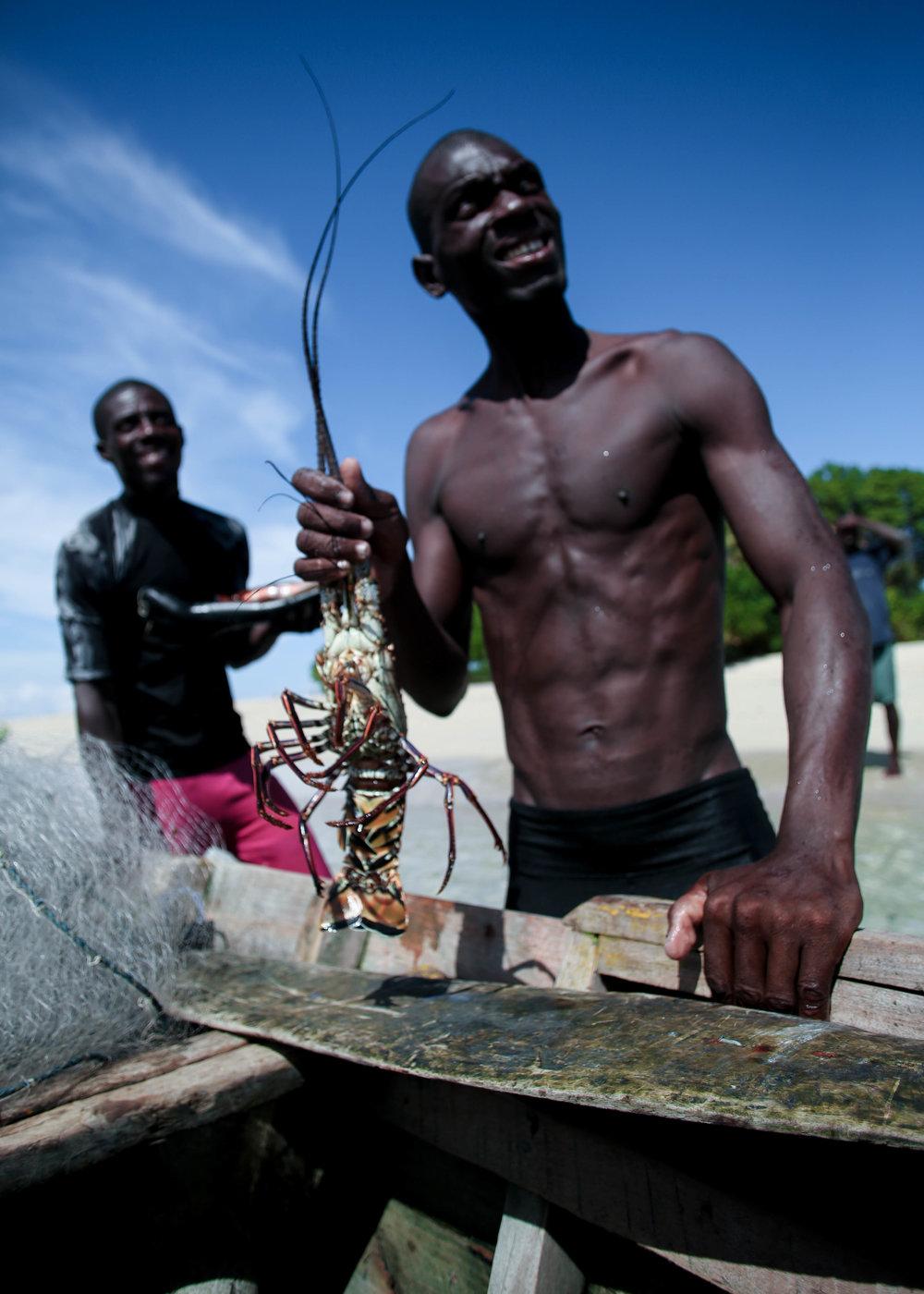 Bargaining Lobsters