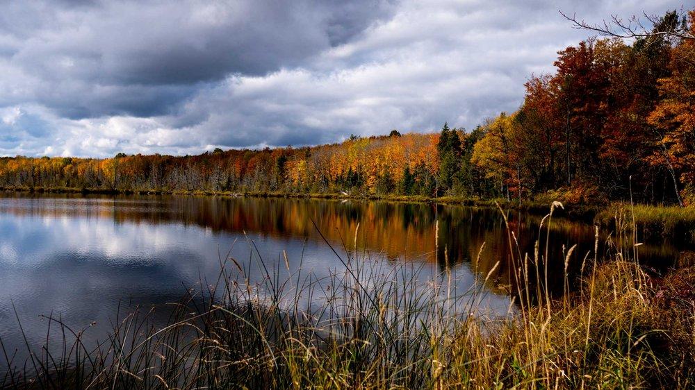 Silver Lake Fall 0026_2014-10-11.jpg