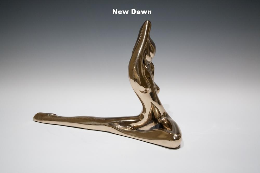 New Dawn, study