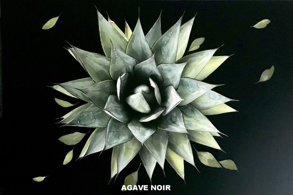 Agave Noir_30 x 20_on wood panel.JPG