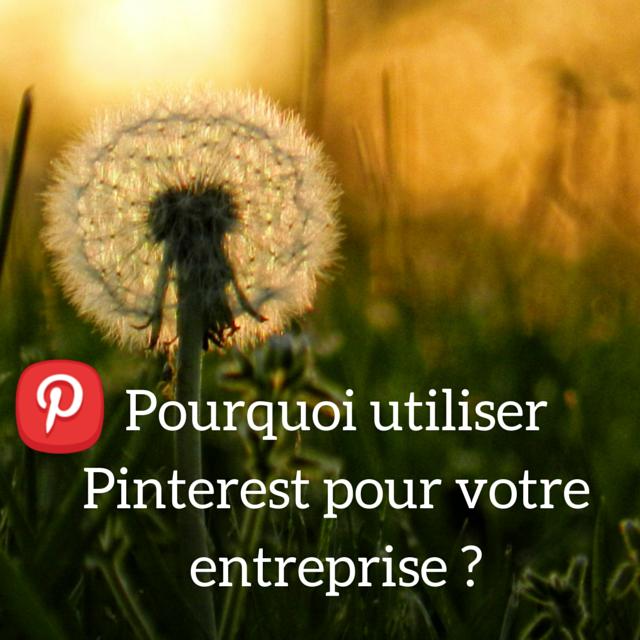 Pourquoi-Pinterest-entreprise.png