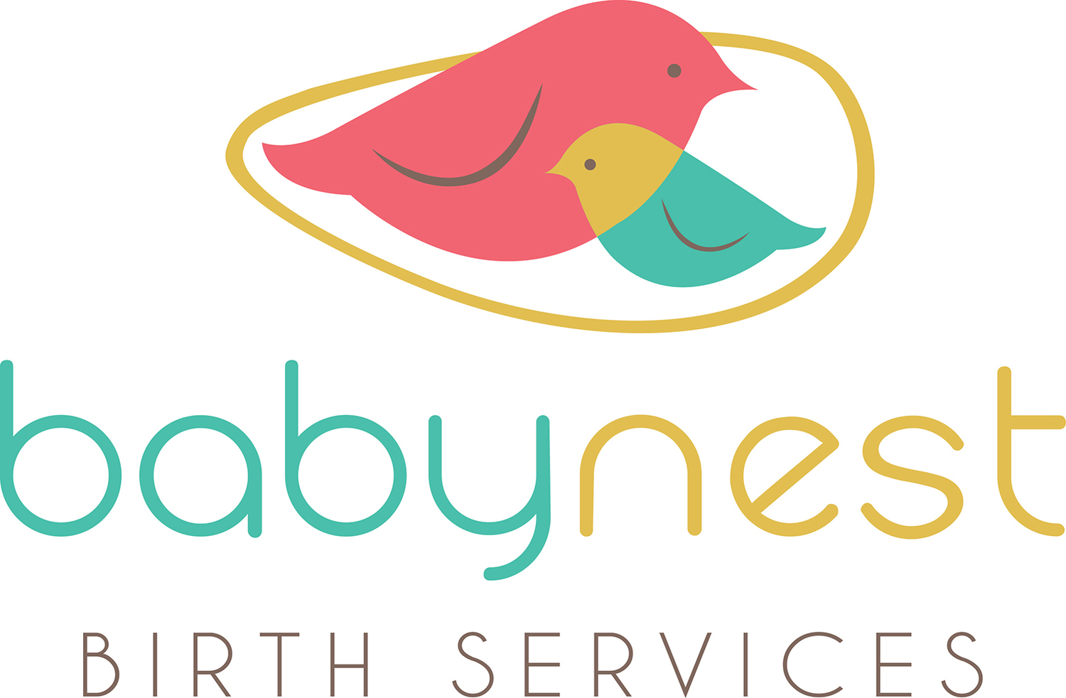 Baby Nest Birth Services