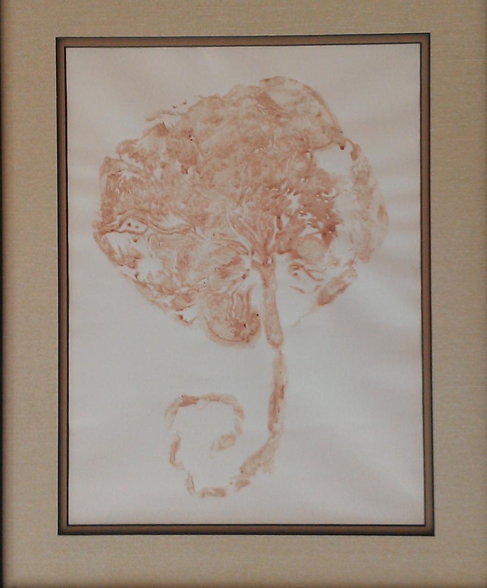 Placenta encapsulation in Gresham, Porltand Oregon