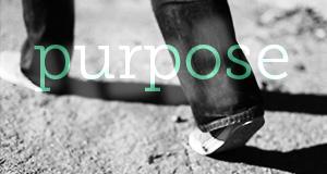 purpose_deselected.jpg