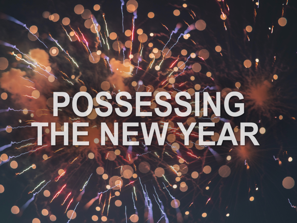 20181230 Possessing the New Year.png