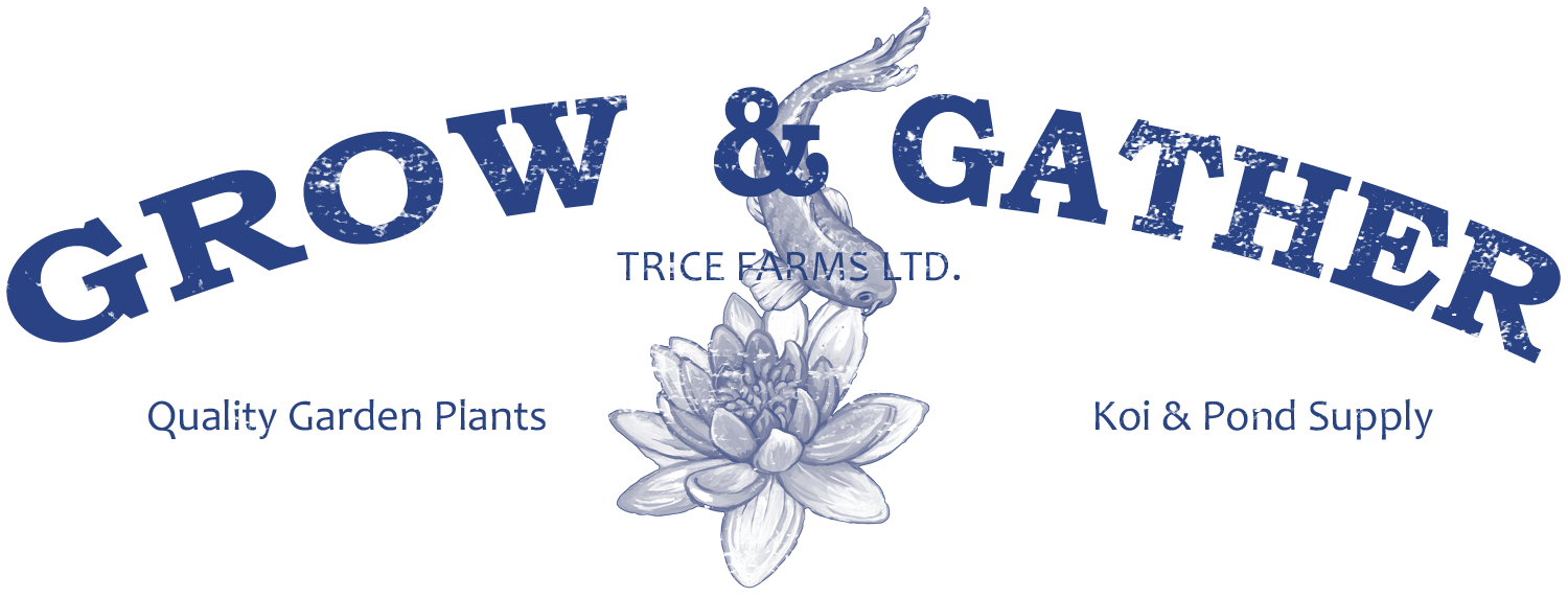 Grow & Gather (Trice Farms Ltd.)