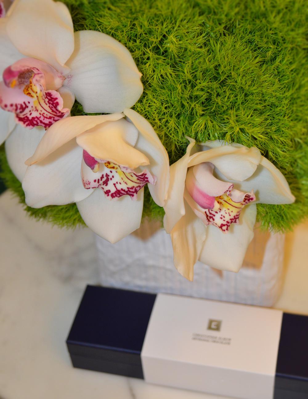 KALLA flowers orchids