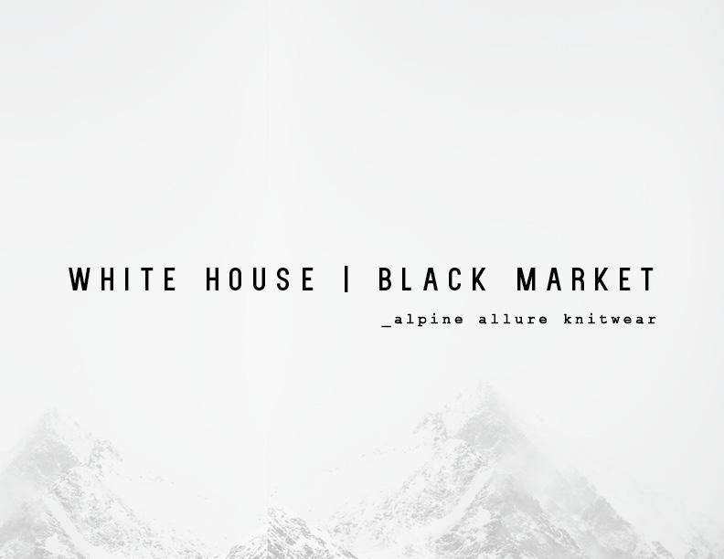 WHBM PRES WEB16.jpg
