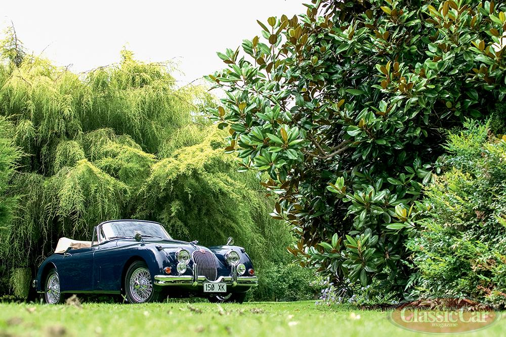 1959-Jaguar-XK150.jpg