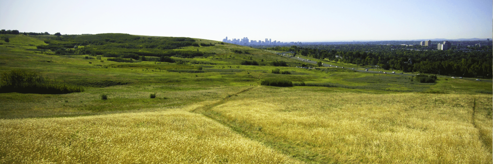 Nose Hill Park Trail + Pathway Plan The City of Calgary
