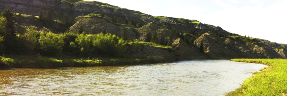 Red Deer Integrated Watershed Management Plan: Background Technical Reports Red Deer Watershed Alliance