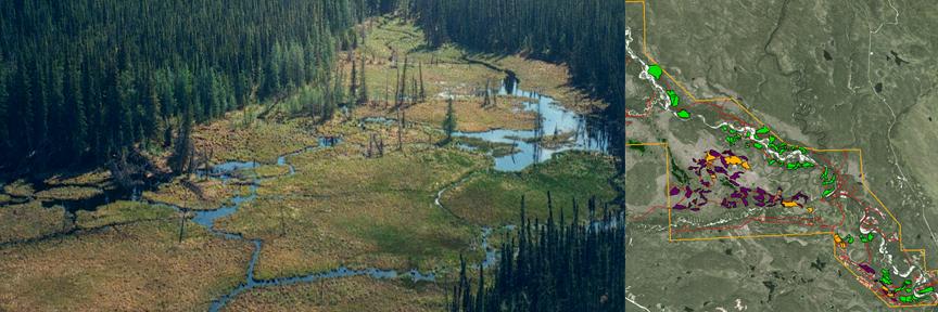 Kaska Forest Resources Environmental Assessment Report 1.jpg