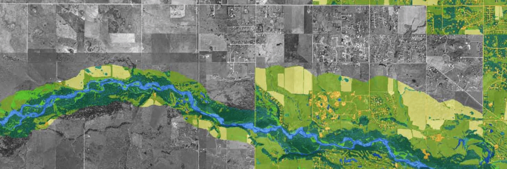 Intermunicipal Development Plan Biophysical Mapping Study   : Calgary + Rocky View County  The City of Calgary / Rocky View County