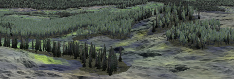 Cypress Hills Integrated Forest + Wildfire Management Plan Government of Alberta