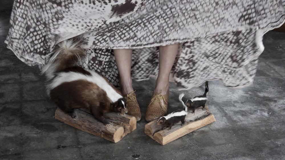 skunkfamily.jpg