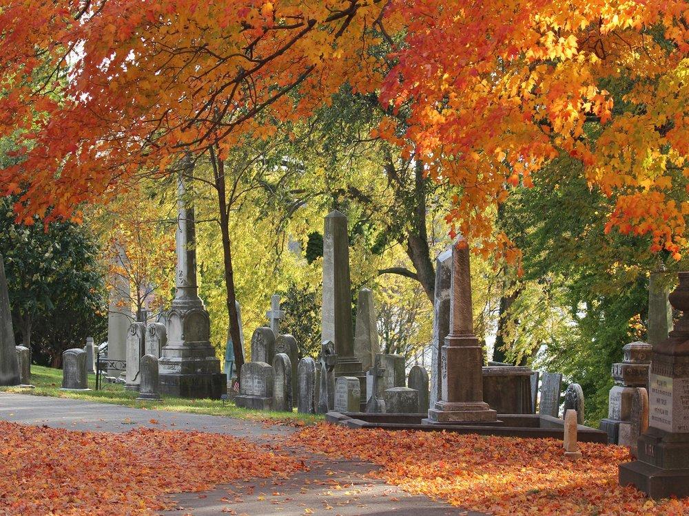 The Arboretum at West Laurel Hill & Laurel Hill Cemeteries