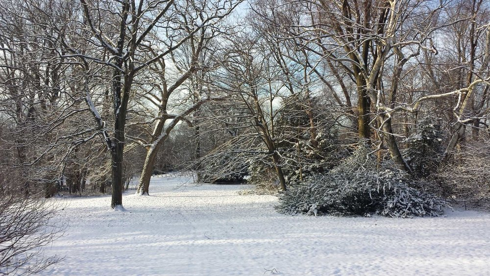 Copy of Awbury Arboretum