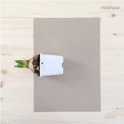 Lay the potted bulb at the edge of a sheet of paper. Place it far enough from the paper's edge to mask the lip of the plastic pot.