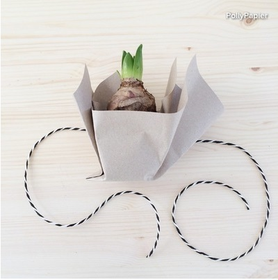 Again lay the bulb on the table, with the tape at the back. Cut a piece of string and place it under the pot.