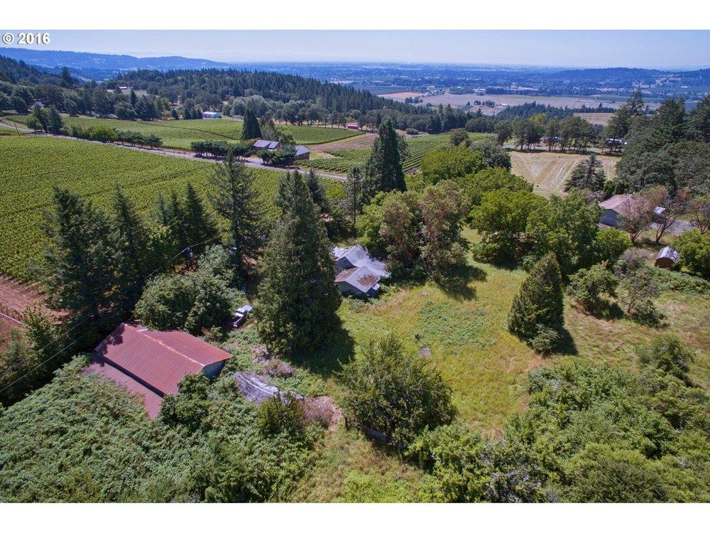 37 vineyard ready acres in Newberg.