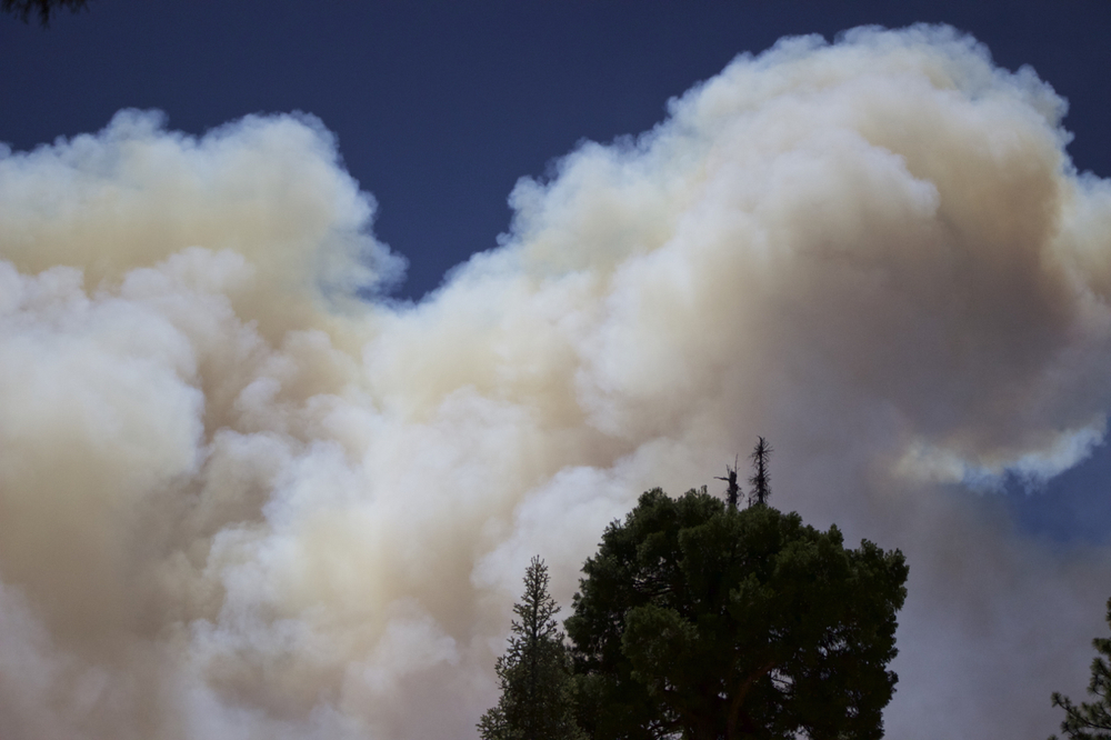 """Lake Fire: Smoke over the Command Post"""