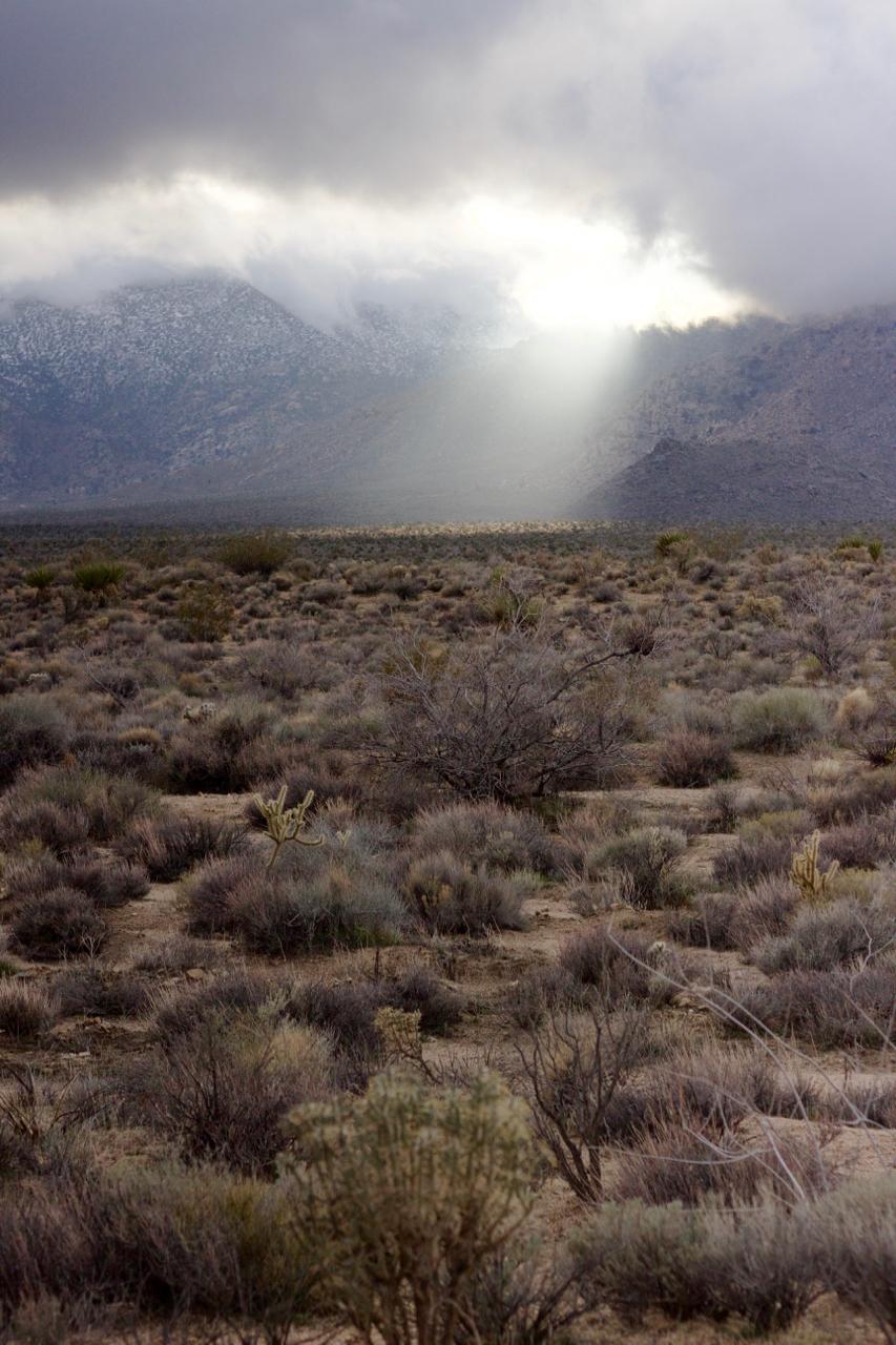 Mojave Sunbeam #1.jpg