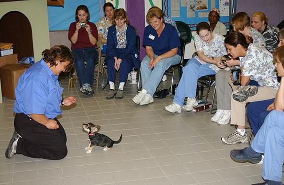 Seminar at a shelter