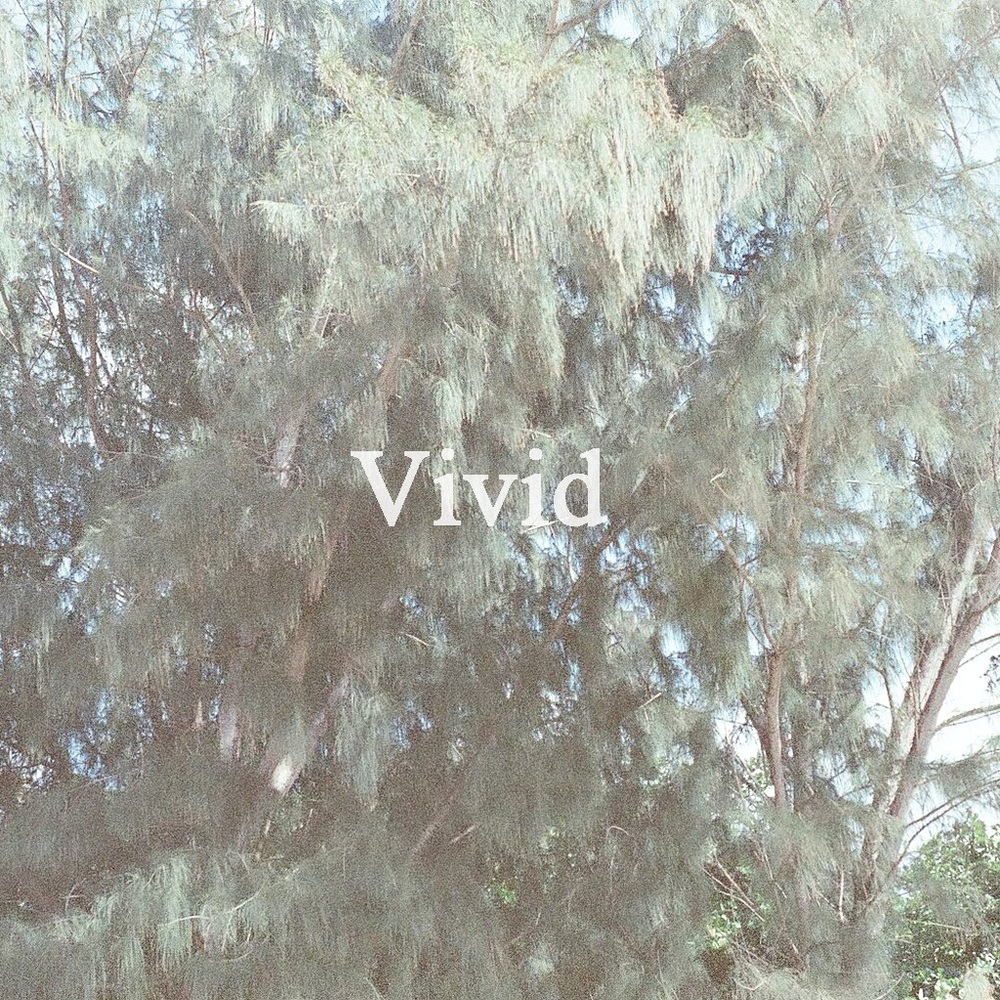 Bedroom - Vivid_cover.jpg