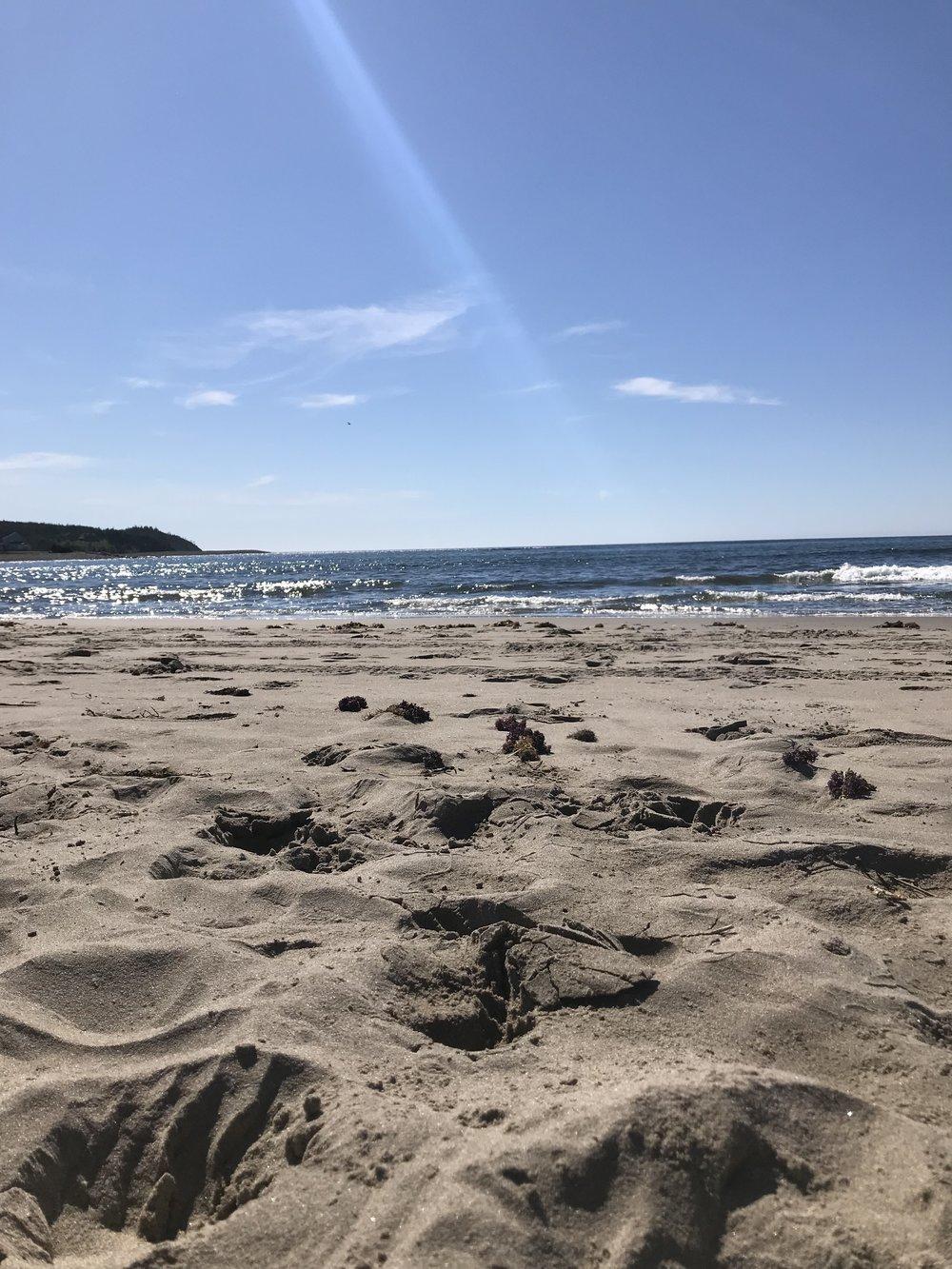 beach.byamygrace