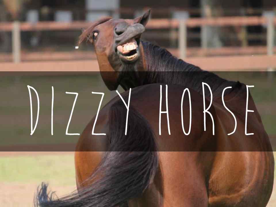 DizzyHorse