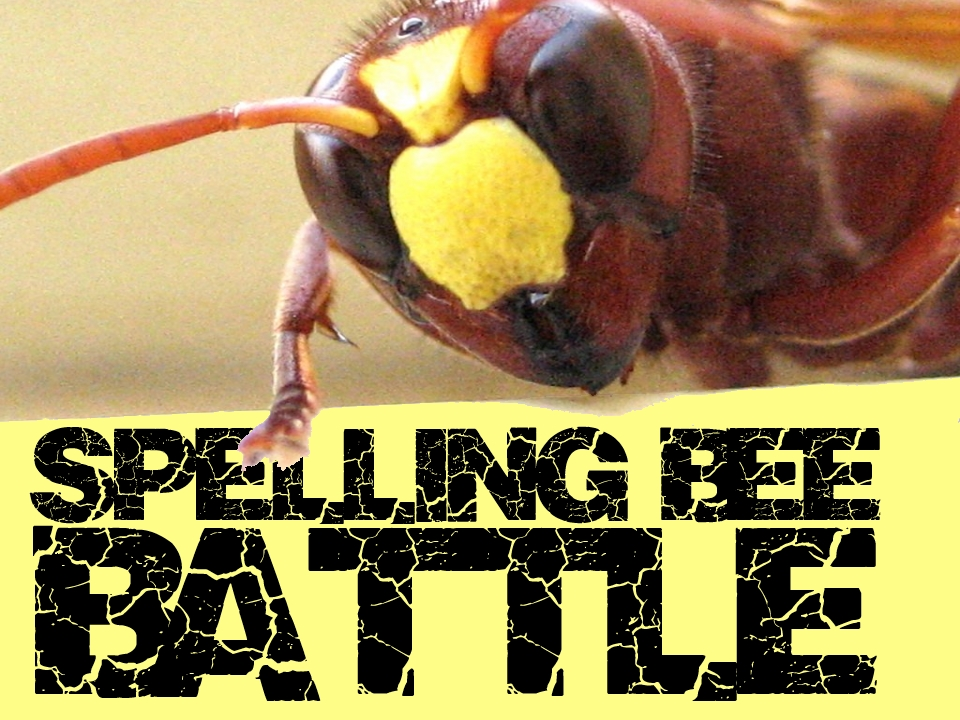 Spelling Bee Battle