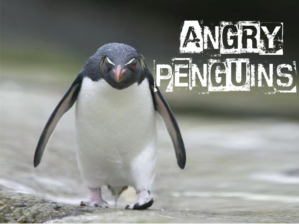 Groupgames angry penguins