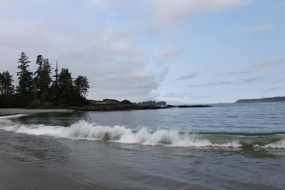 More of Half Moon Bay Beach.