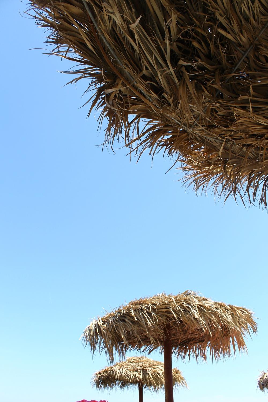 Perissa Beach. A bit more popular than Perivolos Beach.
