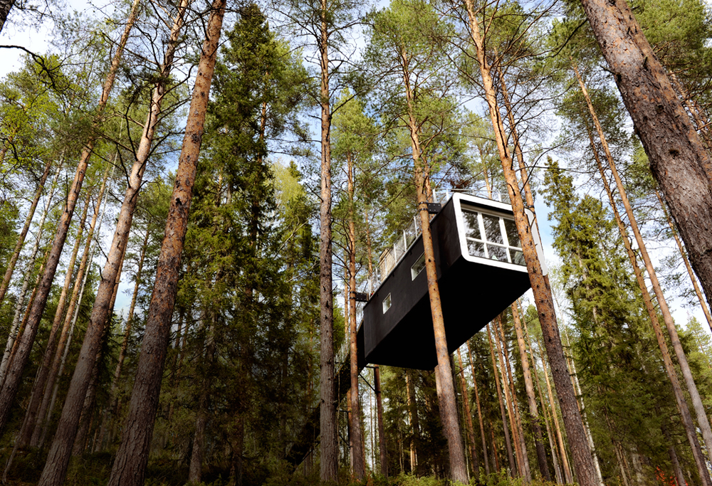 Detail Collective | Treehotel | Image: Conde Nast Traveler