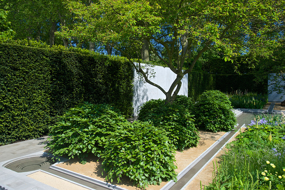 Detail Collective | RHS Chelsea Flower Show 2014 |The Laurent Perrier Garden by Luciano Giubbilei | Photo: RHS