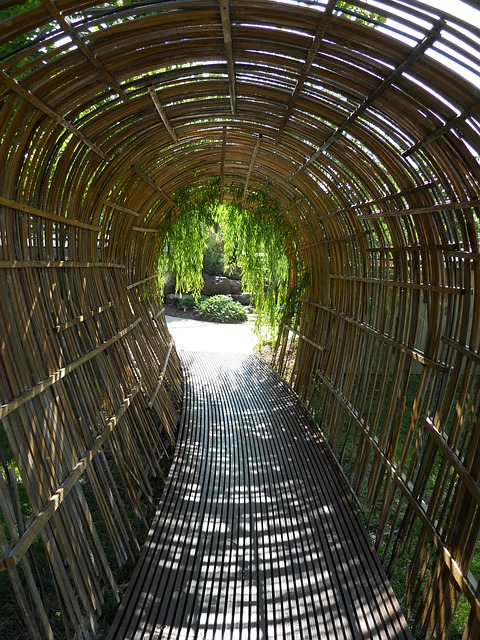 Detail Collective | Outside Spaces - Bamboo Tunnel  | Image:  Pixabay