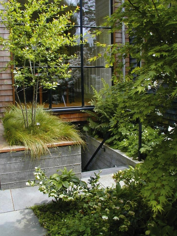Detail Collective | Outside Spaces | Parkside Garden San Francisco | Image: Scott Lewis Landscape Architecture
