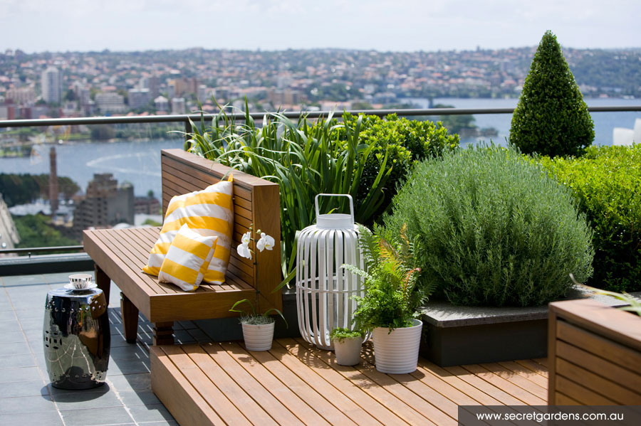 Detail Collective | Outdoor Spaces | Sydney Rooftop Garden | Image  Secret Gardens