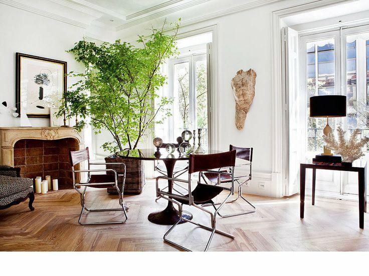 Detail Collective | Interior Spaces| Botanical Decor  | Image:  La Dolce Vita Blog