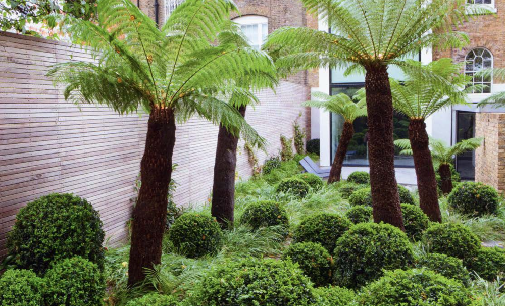 Detail Collective | Outside Spaces | London Garden by Tom Stuart Smith | Image: via Gardenista