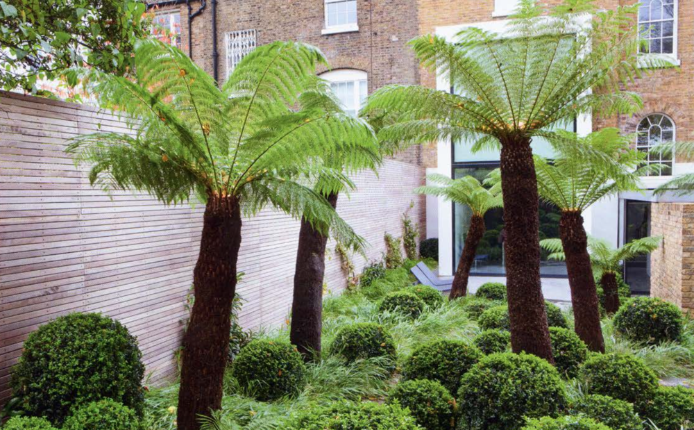 Detail Collective | Outside Spaces | London Garden by Tom Stuart Smith | Image: Marianne Marjerus