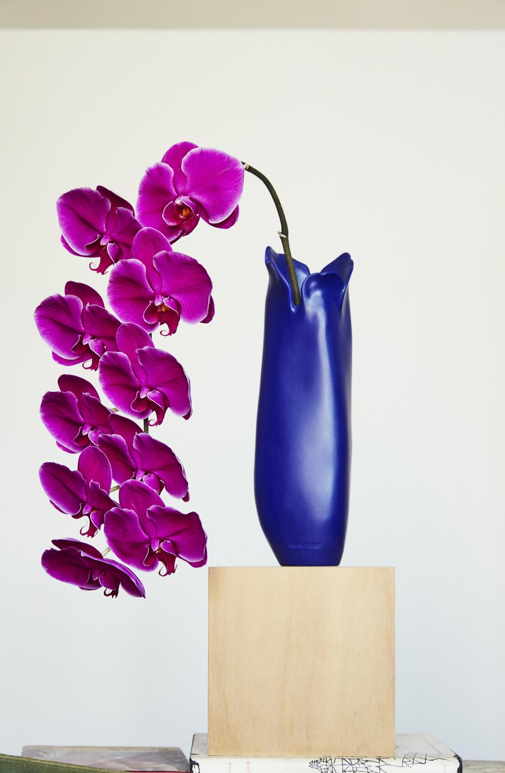 Detail Collective  | Dinosaur Designs Flower Collection | Image: Stephen Chee | Creative Direction: Mark Vasallo