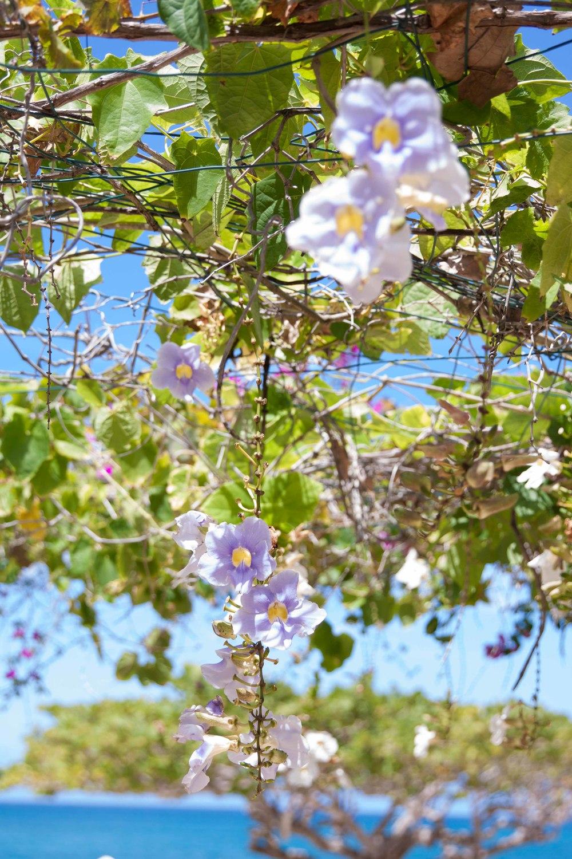 Spring_Break_2015-115.jpg