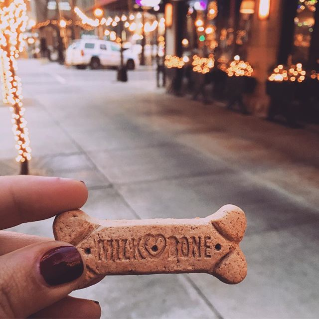 Found in my pocket hours after this morning's family photo shoot, dogs are part of the family too! ✨🐶🌲❤️📸 So grateful to be so busy this time of year 🙌🏼 #photographerlife #milkbone #chicagofamilyphotographer #tistheseason #happyeverything #christmasinchicago #dogsofinsta #fridayfriyay