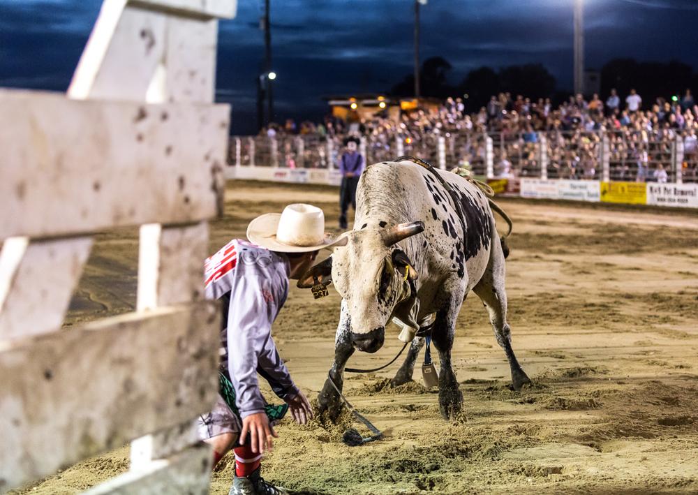 Dustin-DeYoe-Photography-Bull-Riding-4.jpg